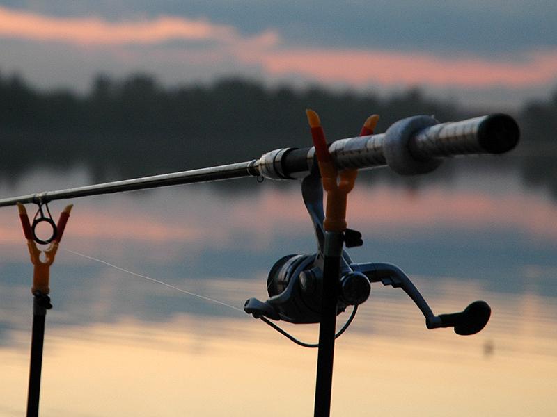 Пенсионер прославился вweb-сети тем, что ищет товарища для рыбалки