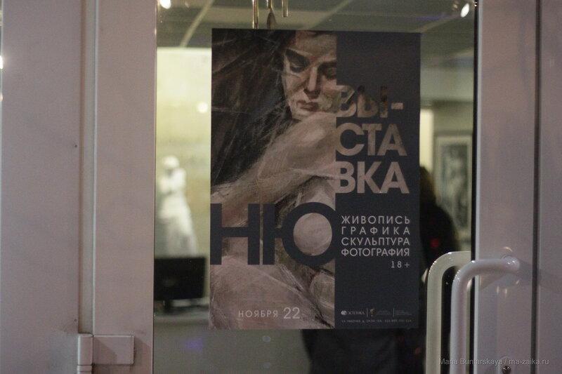 Ню, Саратов, галерея 'Эстетика', 22 ноября 2016 года
