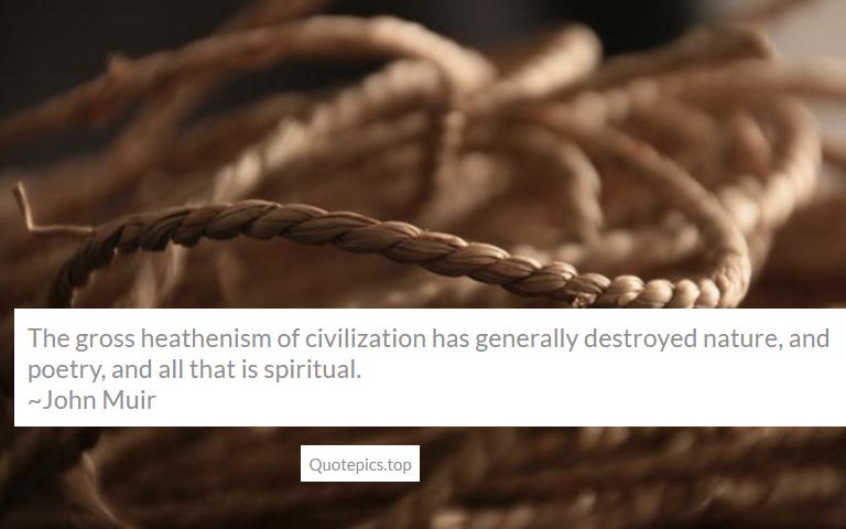 The gross heathenism of civilization has generally destroyed nature, and poetry, and all that is spiritual. ~John Muir