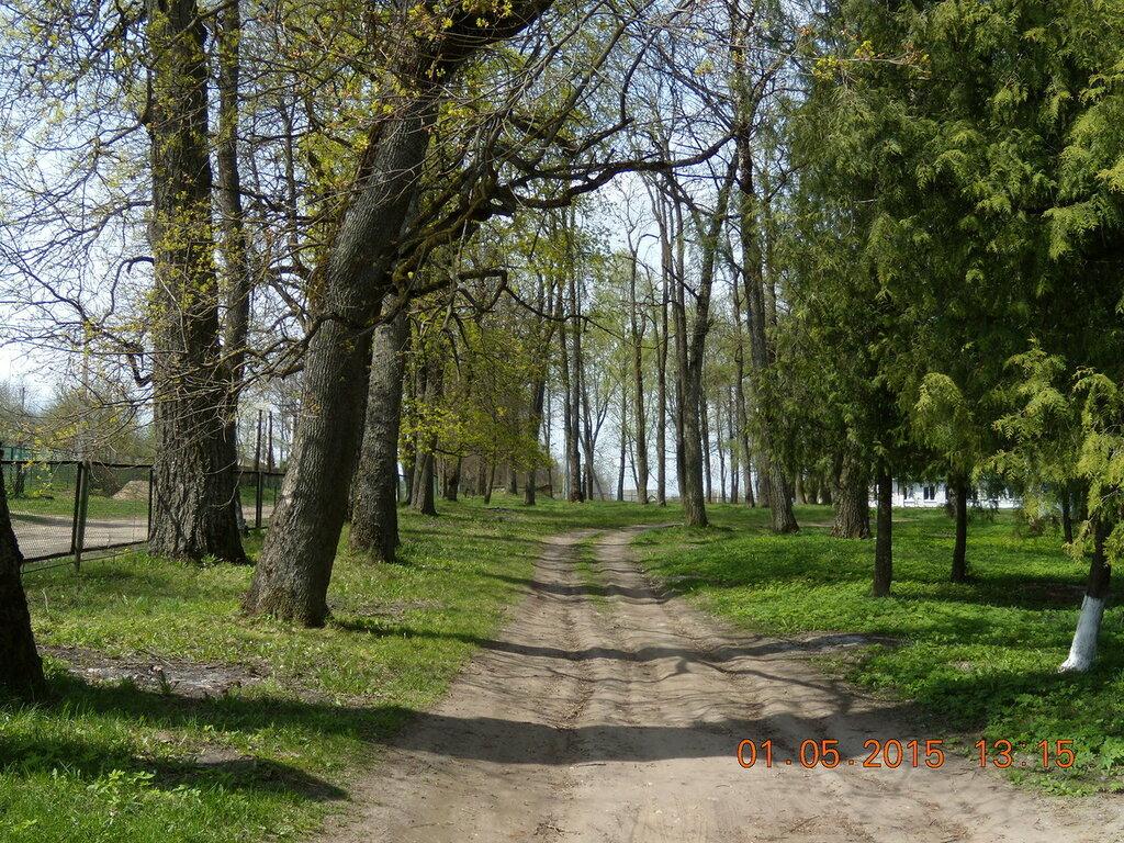Зачем китайцам белорусская деревня? наблюдения