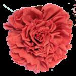 Melaniesthings-bloem4.png