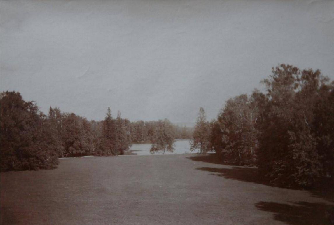 Вид на Ивановский пруд от Ропшинского дворца