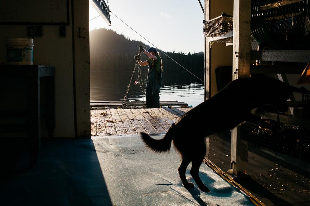 Отшельник, живущий в окружении китов и медведей на Аляске