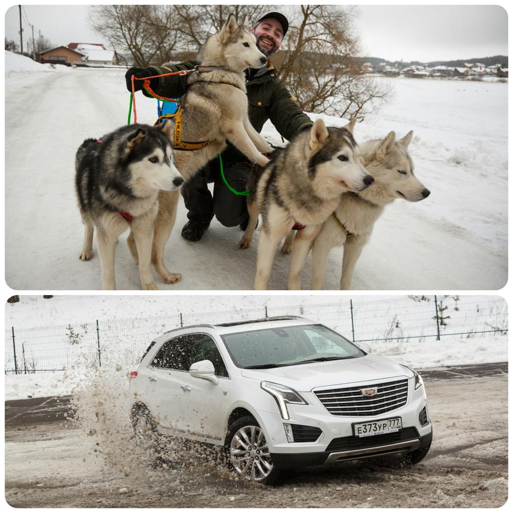 Горячий зимний тест-драйв Cadillaс XT5 беларуской сборки. Что лучше 4 собачьих хаски-сил или 310 лошадиных сил