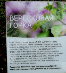 https://img-fotki.yandex.ru/get/177902/184459687.267/0_1a91c2_de65d13f_M.jpg