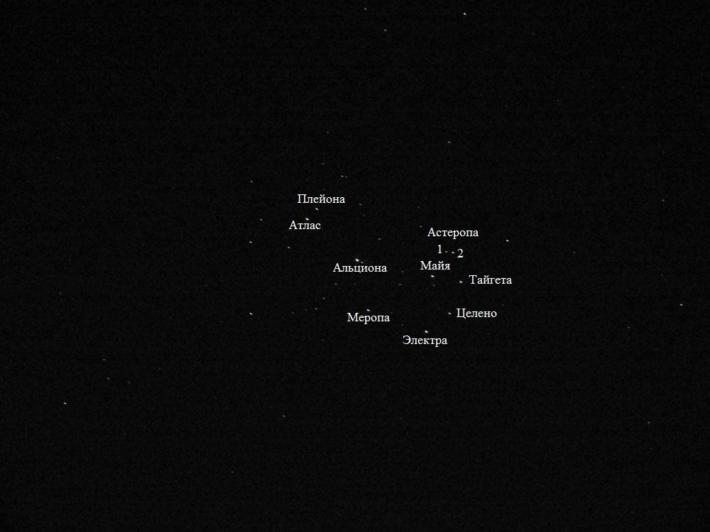 Созвездия: Орион, Большой Пес, Малый Пес, Близнецы, Возничий, Телец, Единорог