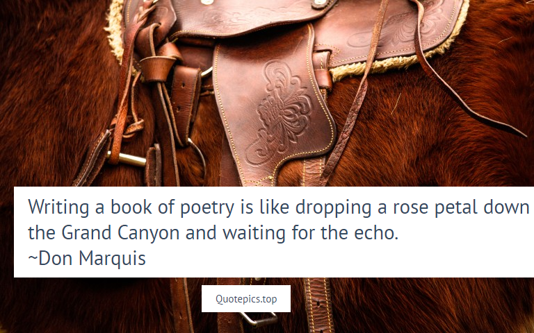Writing a book of poetry is like dropping a rose petal down the Grand Canyon and waiting for the echo. ~Don Marquis