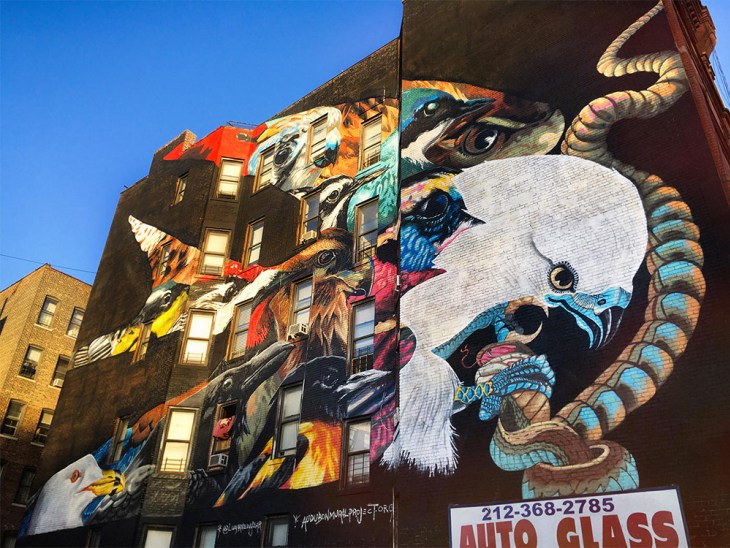 The Audobon Mural Project highlights endangered birds in a powerful series of murals
