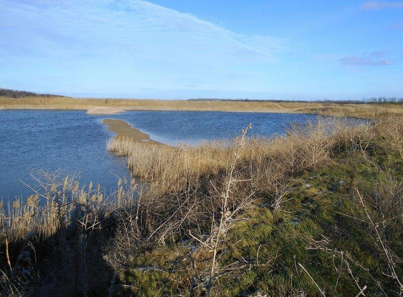 Солнечно, декабрь, у озера ... DSCN0467.JPG
