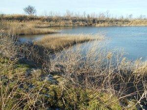 В походе, вид на зимнее солёное озеро ... DSCN0469.JPG