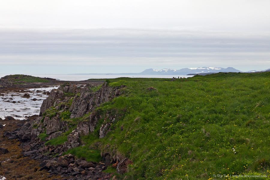 22. Дороги Нордюрланда и киты залива Скъяльфанди.