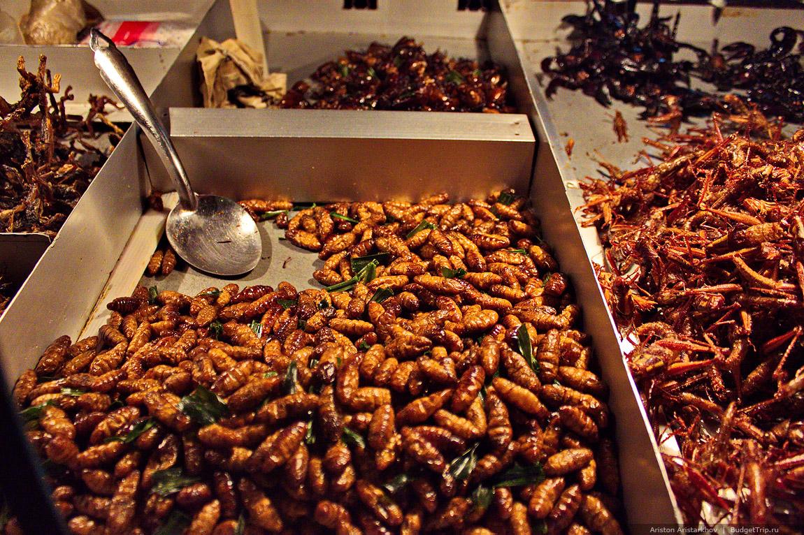 представить жареные тараканы картинки работы быстро стали