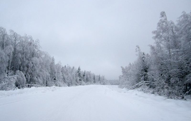 Снежная осенняя картинка с добрым утром собрали