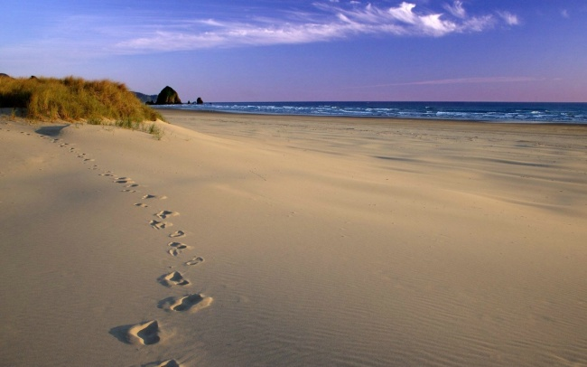 t raveling.by Чем заняться: Летом— отдохнуть напобережье Балтийского моря. Зимой— кататься налыж