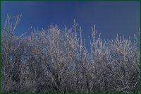 http://img-fotki.yandex.ru/get/17840/15842935.4c/0_c63c8_b88ca078_orig.jpg