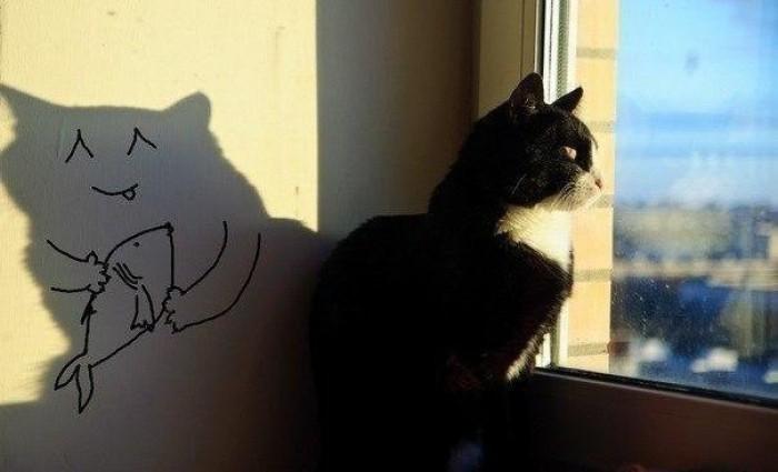 прощение кота