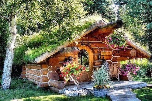 Лесной дом в Норвегии.jpg