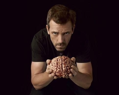 Из чего состоит мозг среднестатистического мужчины