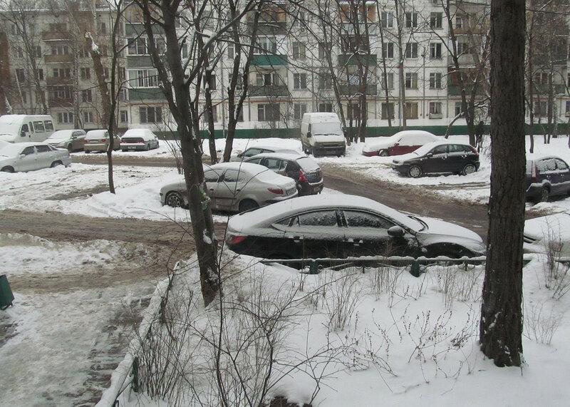 снег выпал.jpg