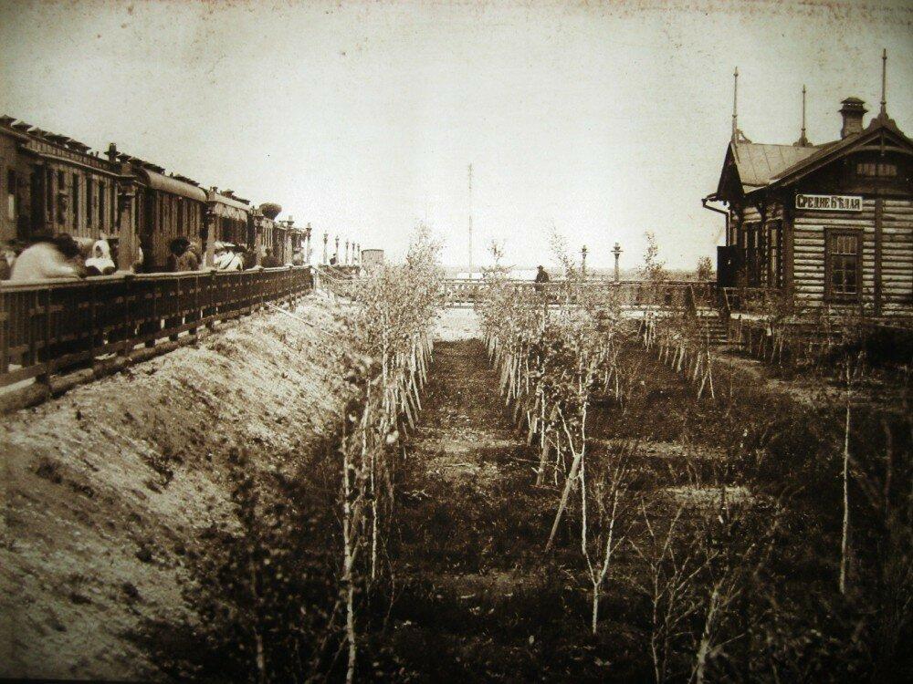 24. Станция Средне-Белая