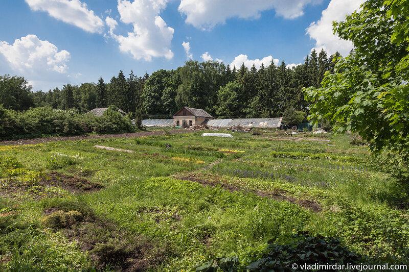Огородное и тепличное хозяйство. Усадьба Суханово.