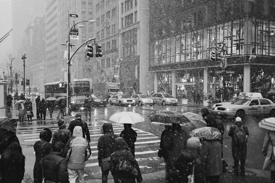Snow day280.jpg