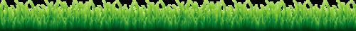 Трава, поляны