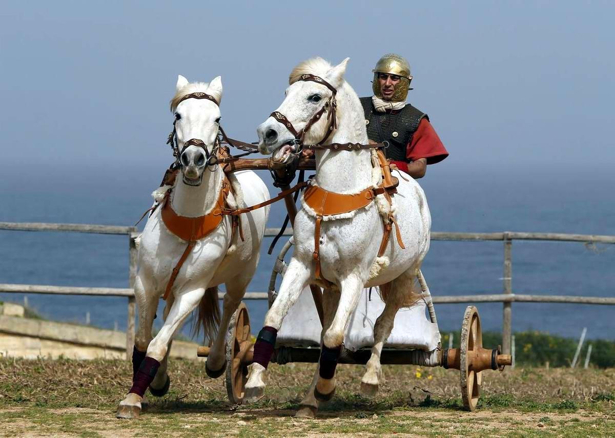 Легионеры армии Древнего Рима: Современный вариант попытки захвата острова Мальта (2)