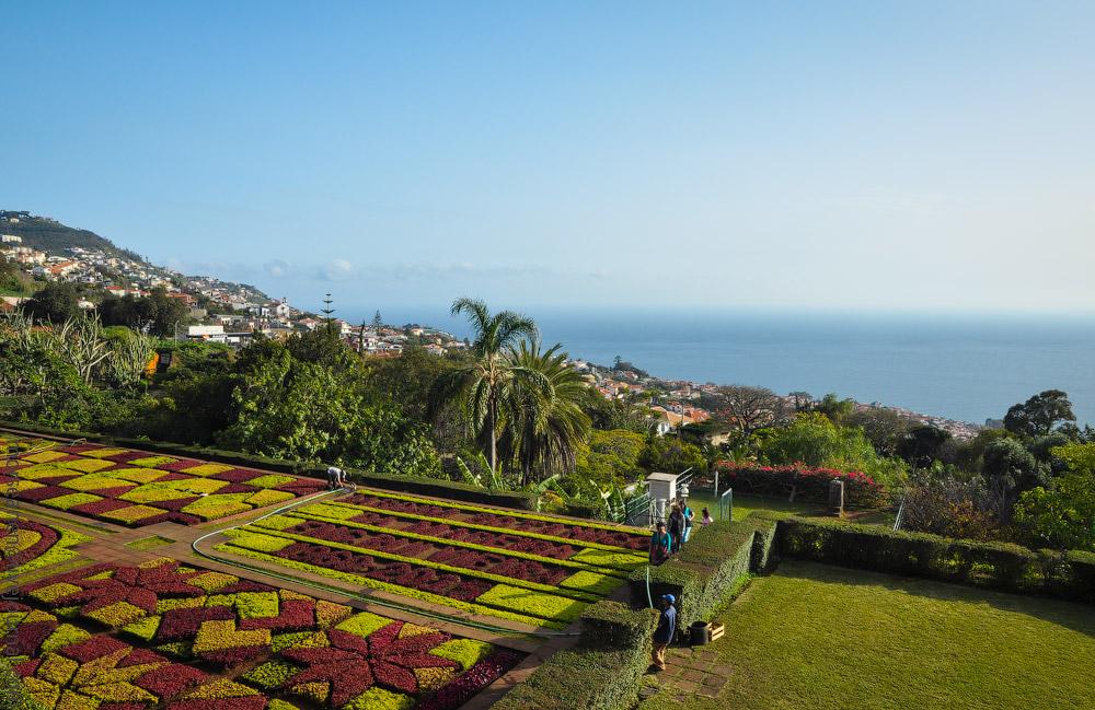Madeira-Garten-(17).jpg