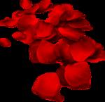 !Valentijn_b (51).png