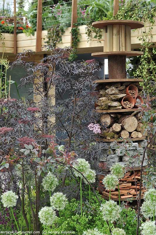 The RHS Greening Grey Britain Garden (78).jpg