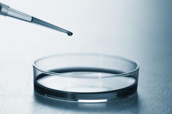 Американская супербактерия начала распространяться по воздуху, создав угрозу глобальной эпидемии