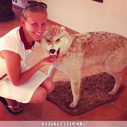 http://img-fotki.yandex.ru/get/17847/306391148.3/0_da2cb_987e2a95_orig.jpg