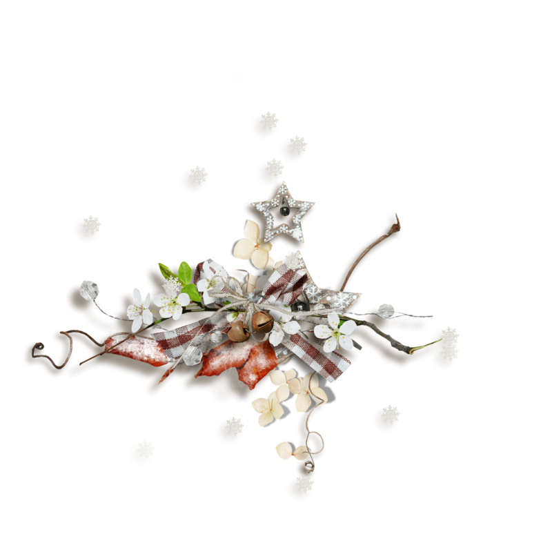 natali_14_winter_cluster12.png