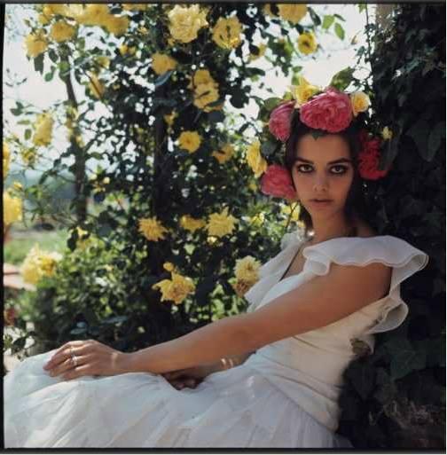 Tina Aumont by Angelo Frontoni (1968)80.jpg