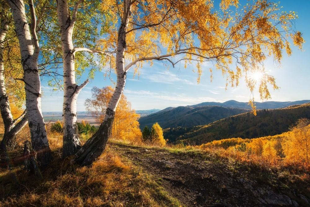 11. Осень, Россия. (© Павел Силиненко)
