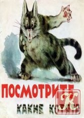 Книга Посмотрите, какие котята