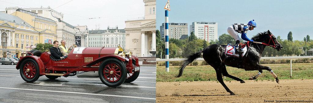 Лошади.22..jpg