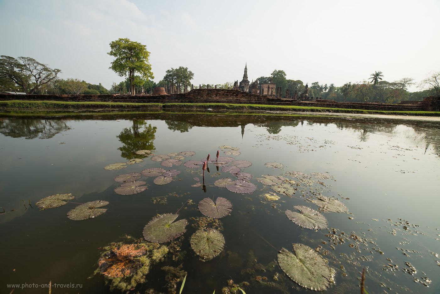 Фото 19. Вид на храмовый комплекс Wat Mahathat (Ват Махатхат) в вечернее время. Парк Sukhothai Historical Park. Снято на ширик Samyang 14/2.8