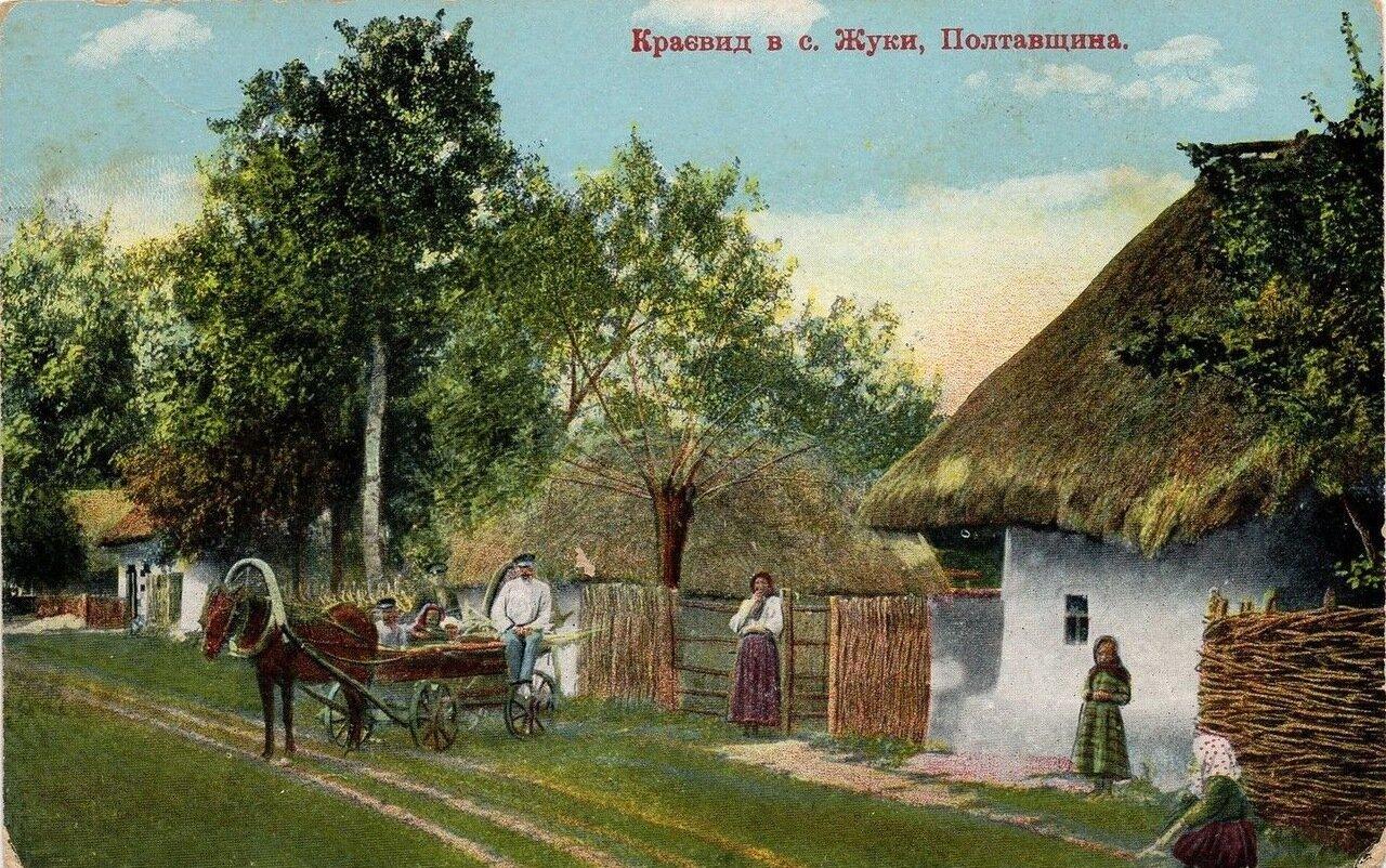 Вид села Жуки, Полтавщина
