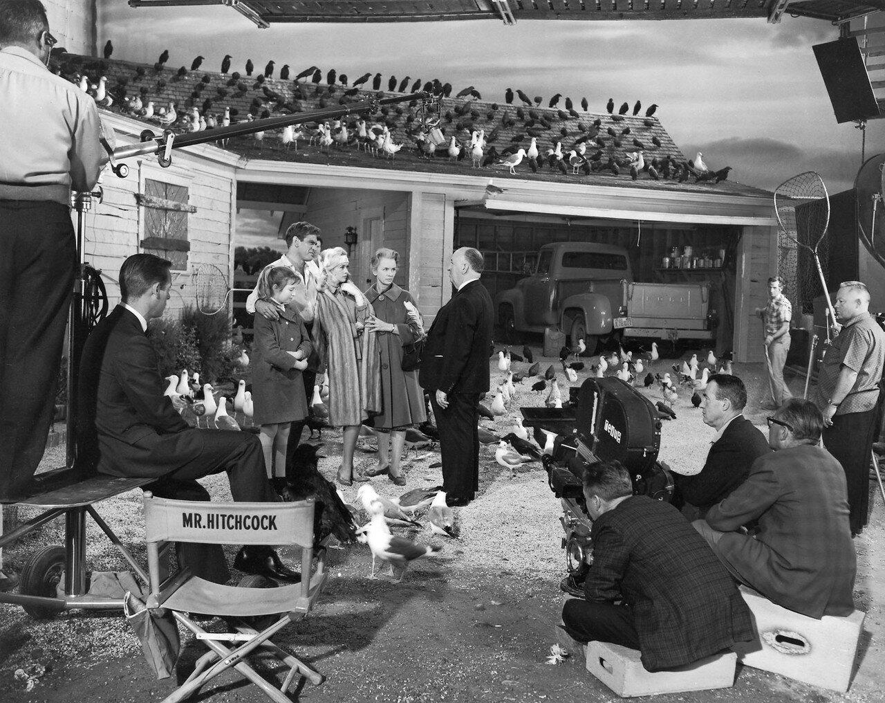 1963. Альфред Хичкок , Род Тейлор, Типпи Хедрен , Джессика Тэнди , Вероника Картрайт на съемках фильма «Птицы»