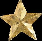 natali_design_xmas_star2b.png