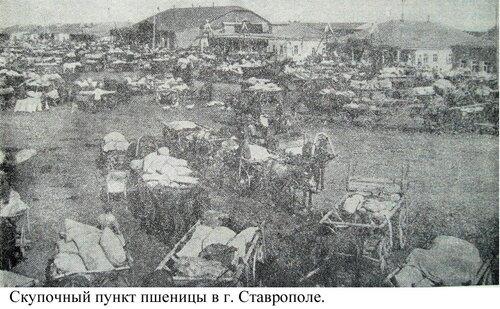 Скупочный пункт пшеницы в Ставрополе.jpg