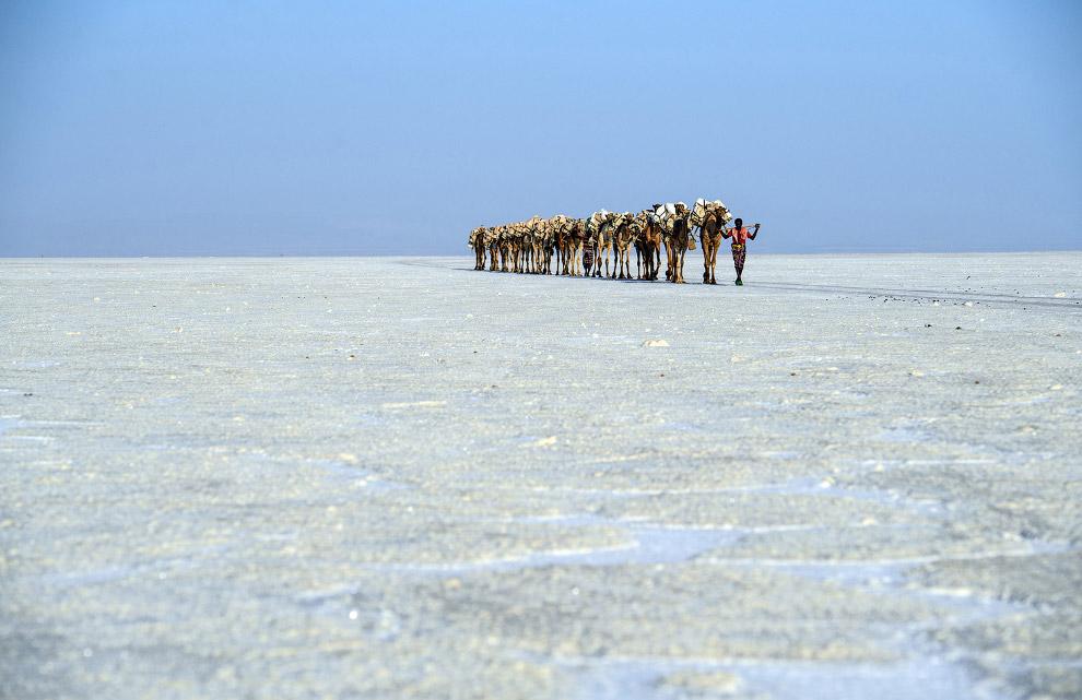 12. Цветная калийная соль. (Фото Eric Lafforgue):