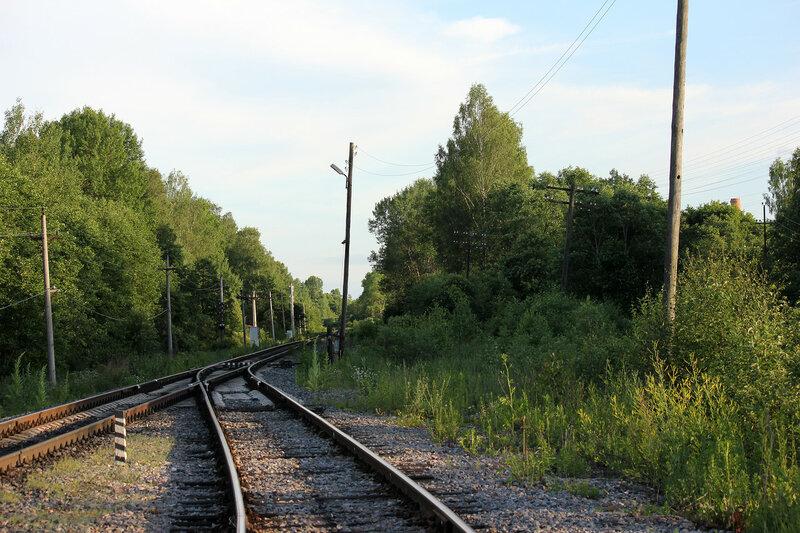 Место примыкания подъездного пути от станции Осуга, сегодня стрелка разобрана, вид на Вязьму