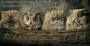 https://img-fotki.yandex.ru/get/17859/194408087.12/0_fd1d6_6b78d00b_M.jpg