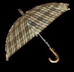 mzimm_fallintoautumn_umbrella2_sh.png