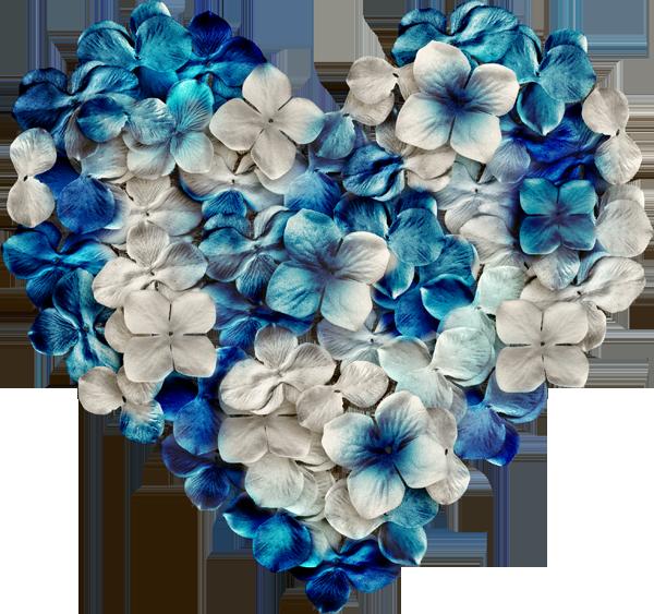 дети картинки сердечки синего цвета картошкой духовке праздничный