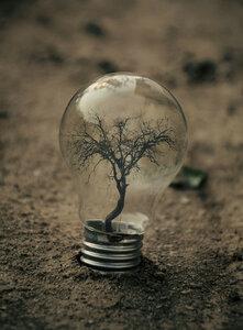Адриана Лимани и его волшебные лампочки