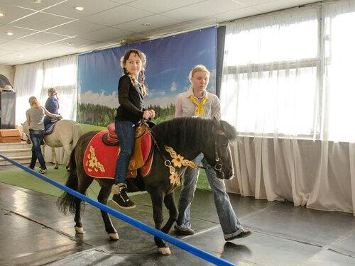 Девочка и лошадь.